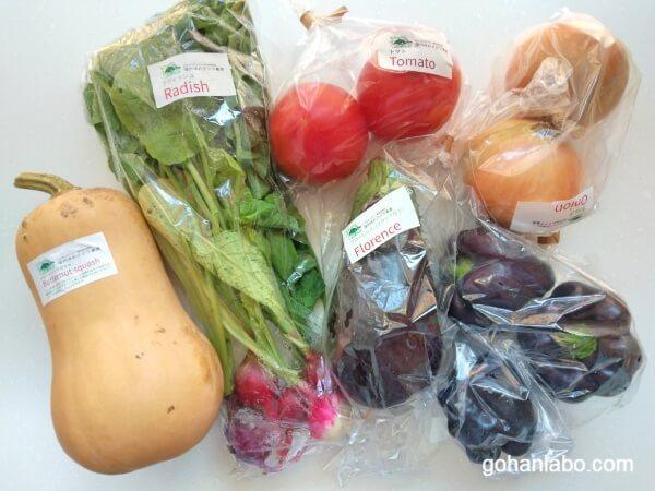 信州ゆめクジラ農園野菜セット