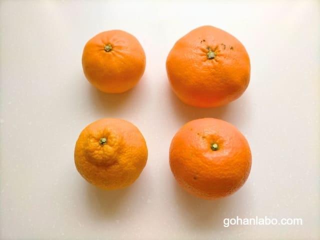 食べチョクフルーツセレクト旬の柑橘セット